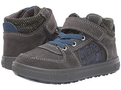 Primigi Kids PBZ 43656 (Toddler/Little Kid) (Grey/Grey) Boy