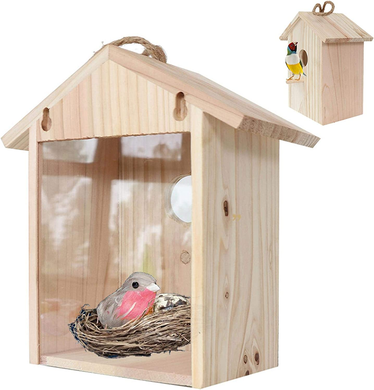 Bird Feeders Houses Max 87% OFF With Garden Cups Ranking TOP18 Outdoor Suction
