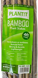 PLANT IT 10-480-060 4 ft Bamboo Stakes - Beige (Pack of 25)