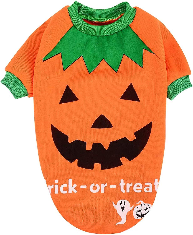 AprilPet Hallowmas Pumpkin,Witch Sweatshirt (XSmall, Aurantium)