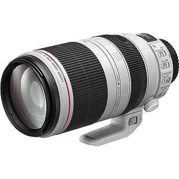 Canon Telezoomobjektiv EF 100-400mm F4.5-5.6L IS II USM Telezoom für EOS (77mm Filtergewinde), hellgrau/schwarz