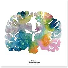 J. Sayuri Human Brain Art Print - 8.5