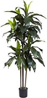 Nearly Natural Dracaena Indoor/Outdoor UV Resistant Plant, 5'