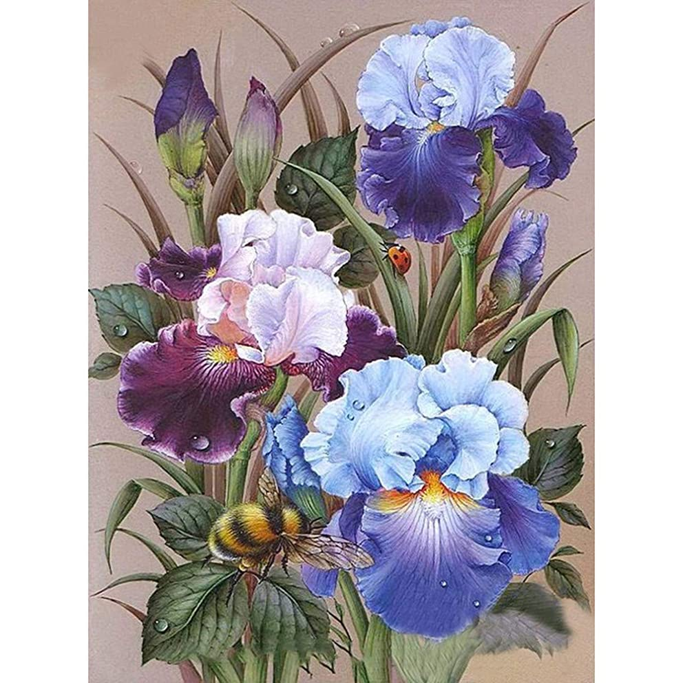 BoutiQ DIY 5D Diamond Painting by Number Kits Full Drills Crystal Rhinestone Diamond Embroidery Paintings Pictures Arts Craft for Home Wall Decor Decorative Cross Stitch for Mother's Day - Lris