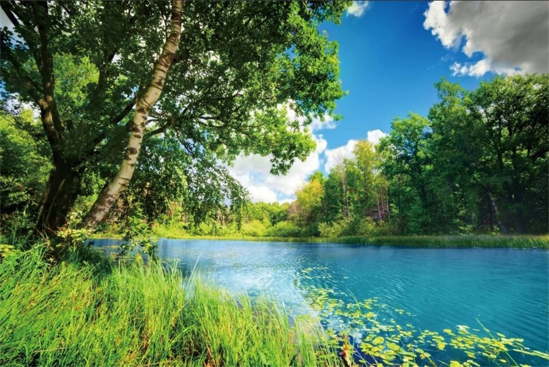 10x6.5ft Summer Lakeside Scenic Polyester Photography Background Green Mountains Clear Lake Water Rock Road Backdrop Wedding Shoot Landscape Wallpaper Holiday Vacation