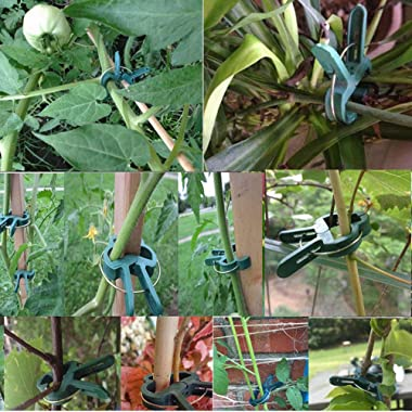 320 Pcs Orchid Plant Clips Ties Plant Support Staking Clips Garden Tomato Flower Vine Clips Loop Lever Plant Fixed Lashing Ti