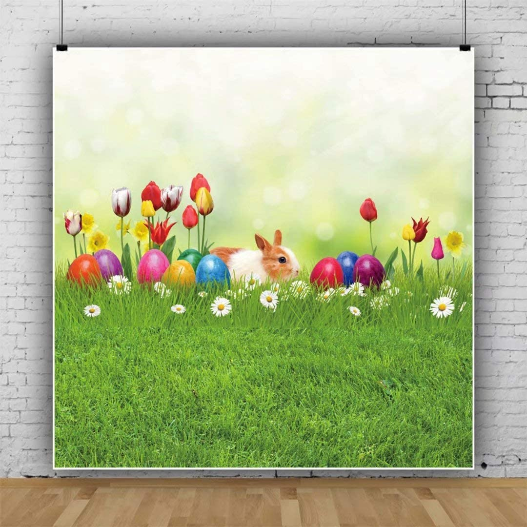 DaShan 10x10ft Spring Floral Easter Backdrop Dreamy Spring Happy Bunny Rabbit Easter Eggs Photography Background Green Grass Sunshine Children Baby Easter Party Decor Portrait Photo Props