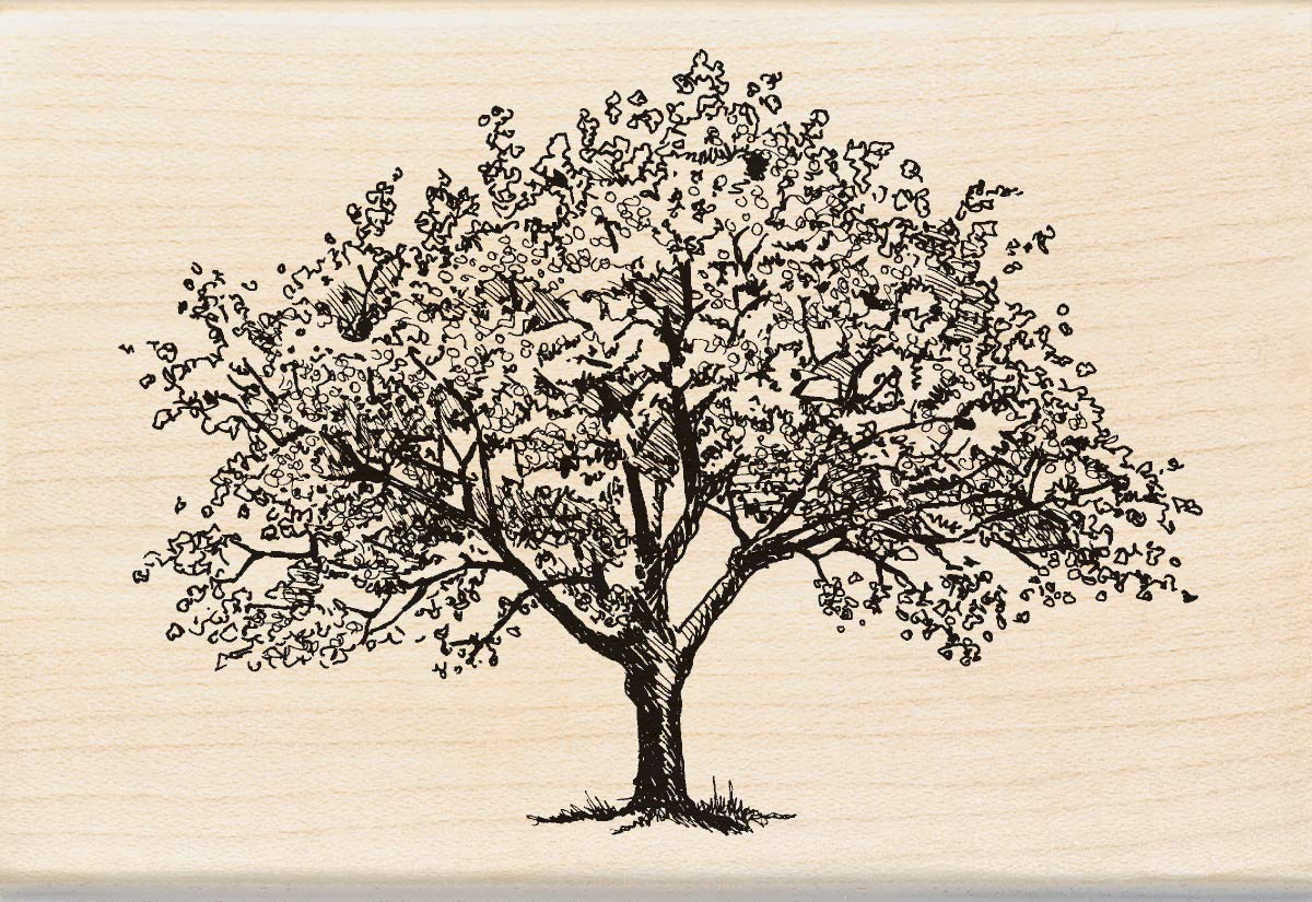 Inkadinkado Spring Blooming Tree Wooden Mounted Rubber Stamp for Card Making and Scrapbooking, 1pc, 4.02''L x 2.77''W