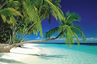 Pyramid America Maldives Polynesian Tropical Beach Photography Art Print Cool Huge Large Giant Poster Art 54x36