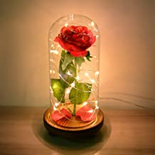 MAGIFIRE Beauty and The Beast Rose,Forever Rose Flowers Light in Glass for Girl Friend Women Mother Kids Valentines Day Wedding Anniversary Home Office Decorations