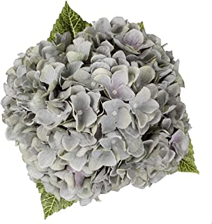 Blooming Paradise Artificial Fake Flowers Plants Silk Hydrangea Arrangements Wedding Bouquets Decorations Plastic Floral Home Kitchen Garden Party Festival Bar DIY (Gray Green,5 Flower Heads)