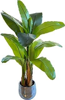 Maia Shop Banane Artificielle, Faite avec Les matériaux, idéale pour la décoration intérieure, Plante Artificielle (120 cm)