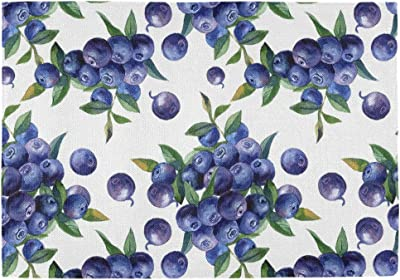 Wild Blueberry fruit dining kitchen table placemats and napkins set of 6