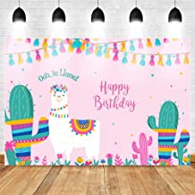 LUOEM Unicorn Themed Photo Photodrop Unicorn Birthday Party Photo Background para Ni/ños Baby Kids Girls Toddles Tel/ón de fondo Baby Shower Fiesta de cumplea/ños Flowers Floor Backdrop 90x150cm