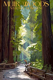 Muir Woods National Monument, California - Pathway (9x12 Art Print, Wall Decor Travel Poster)
