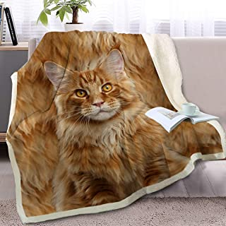 BlessLiving Cute Cat Print Plush Blanket Kitten for Kids Adults 3D Animal Print Plush Blanket Gift for Cat Lovers (Maine Coon,Throw, 50 x 60 Inches)