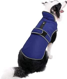Best dog coat for labrador Reviews