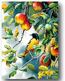 Cobble Hill Northern Oriole Bird Apple Fruit Art Jigsaw Puzzle 1000 Pieces