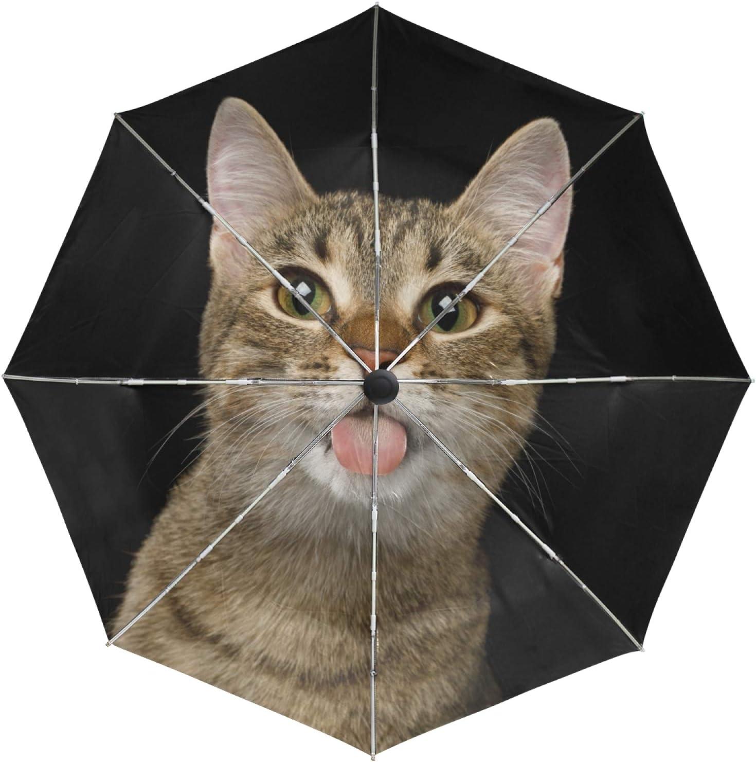 Small Ranking TOP7 Travel Umbrella Windproof Excellence Outdoor Rain Compact Sun Auto UV