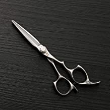 Hair Clipper, Hair Stylist Hairdressing Scissors, 5.5 Inch Stainless Steel Professional Flat Shear (Color : Silver)