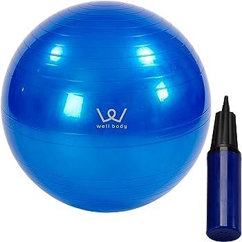 ALINCO(アルインコ) バランスボール 65cm エアーポンプ付 EXG025A ブルー