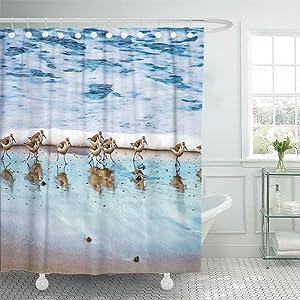 Semtomn Shower Curtain Shorebird Sandpipers Running Along Beach Sand Piper Nautical Ocean 72