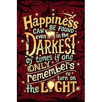 Alter Ego Harry Potter Dumbledore Inspirational Quote Wall Poster (Multicolour, 300 GSM)