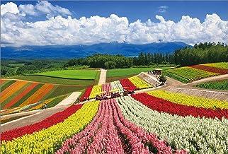 【Amazon.co.jp 限定】四季彩の丘に咲くキンギョソウ 美瑛町 ポストカード3枚セット P3-169