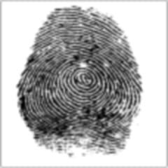 put your finger on the screen and the device will scan your fingerprint
