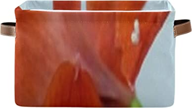 Boîte rectangulaire pour le stockage Amaryllis Fleurs Cube de rangement pliable rouge avec poignée en cuir PU solide Bacs ...