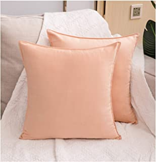 Zealax 2-Pack Decorative Throw Pillow Covers Cases Comfortable Faux Suede Pillowcases for Sofa Couch Living Room Decor, 18 x 18 inches, Peach Pink