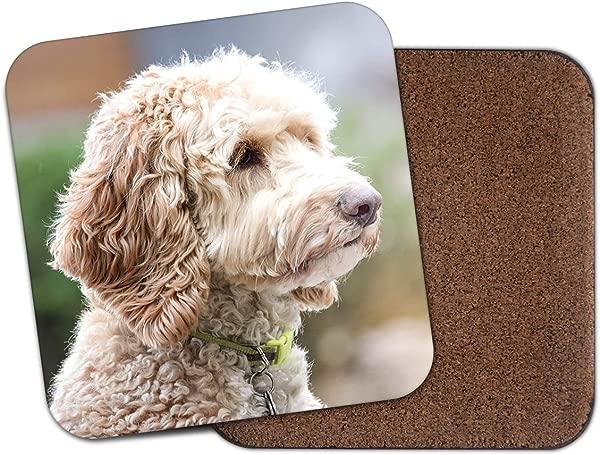 Cute Labradoodle Coaster Labrador Poodle Dog Puppy Animals Pets Gift 15534