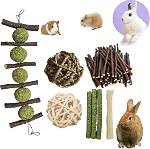 PD Bunny Chew Toys for Teeth, Double Head Suspension, Natural Apple Wood Sticks with Timothy Grass Balls, Improve Dental Health for Rabbits Chinchilla Hamsters Guinea Pigs Gerbils Squirrels