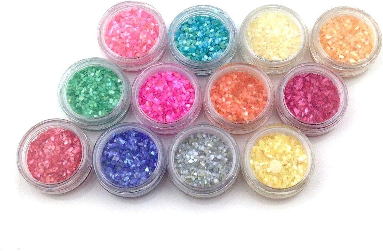 [Pink gold Shop Square] shell powder all 12 colors set nail resin material
