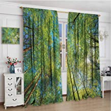 Paddy Benedict Window Drapes for Bedroom W84 x L72 Inch,Thermal Insulating Blackout Curtain,Forest,Evergreen Back Nature Area Mother Earth Lime Trunk Mangrove Flora Willow Photography,Green