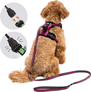 top paw no jump harness