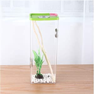 crapelles insect box for children science discover colored cage butterfly spider bottle frog mantis habitat breathable outdoor science and natural animal exploration tools bug catcher critter caterpil