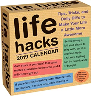 Life Hacks 2019 Day-to-Day Calendar