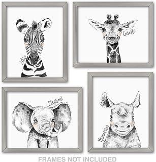Confetti Fox Zoo Animals Safari Baby Nursery Wall Art Decor - 8x10 Unframed Set of 4 Prints - Zebra Elephant Giraffe Rhino...