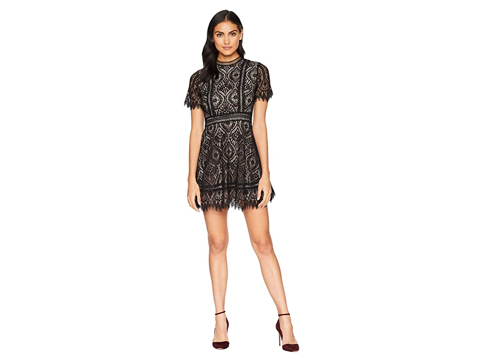 BB Dakota On the List Two-Tone Lace Dress (Black) Women