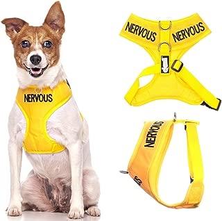 nervous dog harness
