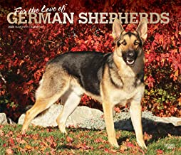 For the Love of German Shepherds 2020 14 x 12 Inch Monthly Deluxe Wall Calendar with Foil Stamped Cover, Animal Dog Breeds