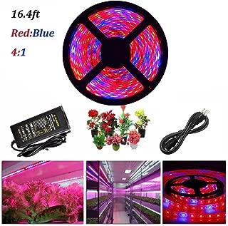 ZCPlus LED Strip Light Plant Grow Lights 16.4ft 5050 SMD Waterproof Full Spectrum Red Blue 4:1 Growing Lamp for Aquarium Greenhouse Hydroponic Plant Garden Flowers (5 M) …