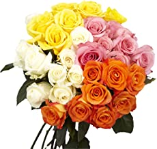 GlobalRose Assorted Roses- 2 Lovely Color- 50 Fresh Flowers For Delivery