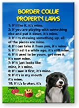 Best border collie property laws Reviews