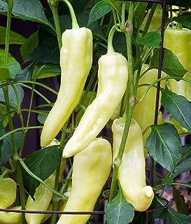 Best sweet banana pepper plant Reviews
