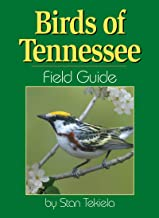 Birds of Tennessee Field Guide PDF