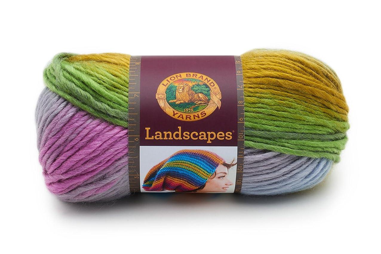 Lion Brand Yarn 545-209 Landscapes Yarn, Wild Flowers, isxnjhreyohho958