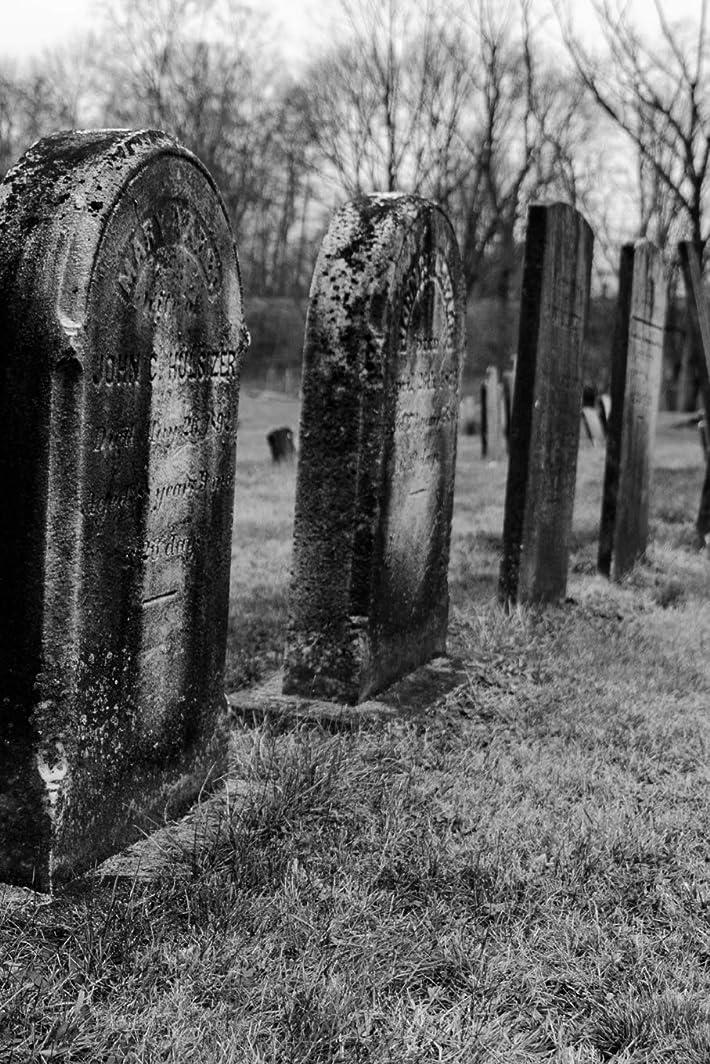 たらいメロディー子犬Tombstones in Autumn Gothic Notebook: Graveyard Gothic Series