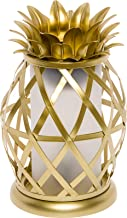 Golden Pineapple Electric Wax Warmer - Tropical Home Fragrance Wax Burner - Mindful Design (Gold)
